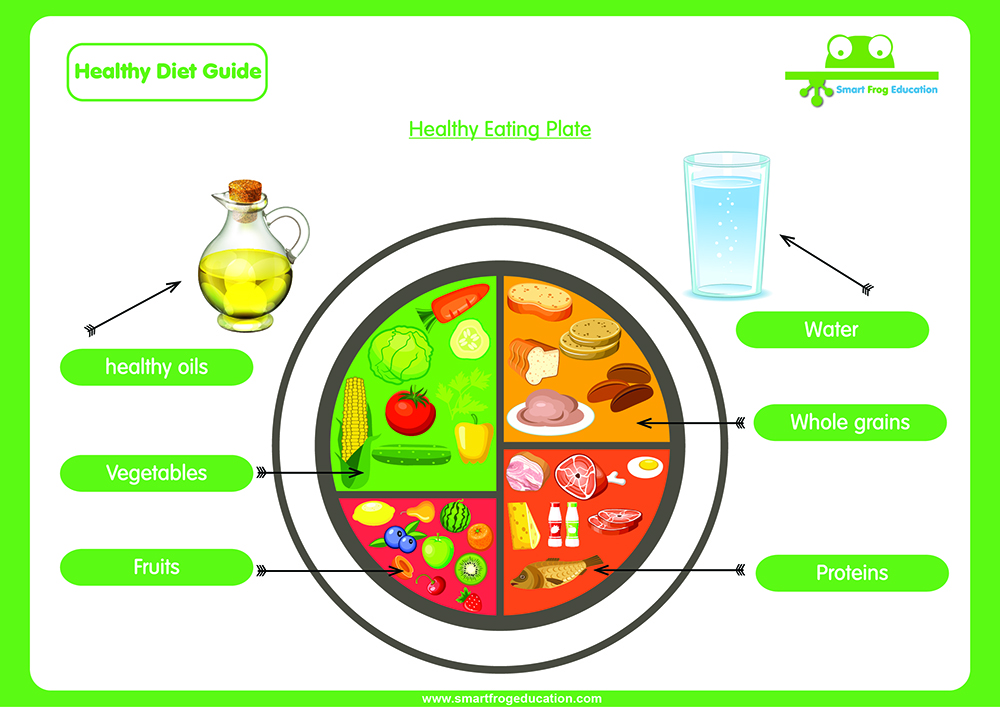 This Interactive Guide Not Only Shares A Healthy Dinner Plate With Children But Also Looks At The Essential Vitamins And Minerals We Get From Food